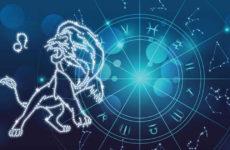 Лев гороскоп 2020: здоровье, любовь, финансы, карьера
