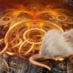 Овен гороскоп 2020: здоровье, любовь, финансы, карьера