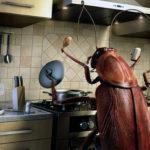 Заговор от тараканов — магическое средство чтобы избавиться от паразитов в доме